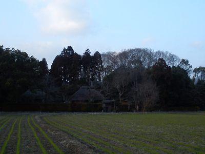 La magnifica area di Arashiyama