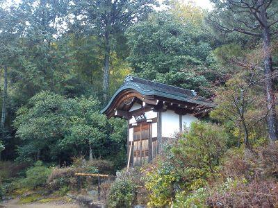 Dove andare, cosa vedere a Kyoto: Arashiyama