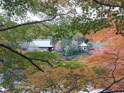 Tempio Ryoan-Ji, Kyoto